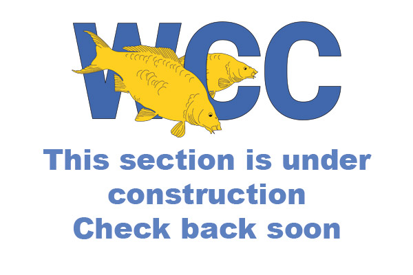 WCC-under-construction