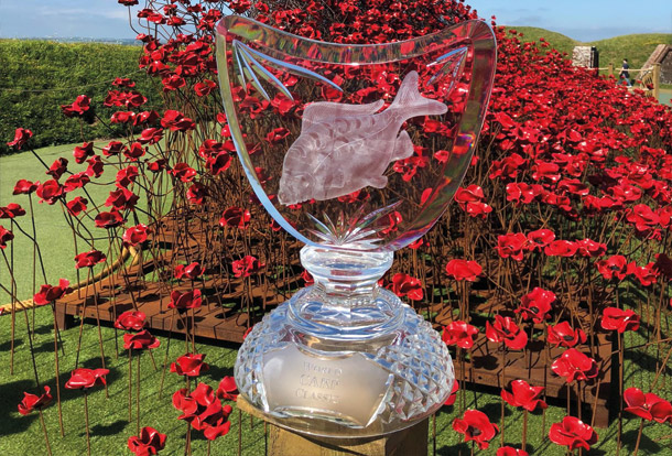 610x414-trophy-and-poppies